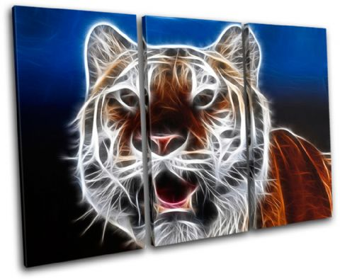 Tiger Absract wild Animals - 13-0144(00B)-TR32-LO